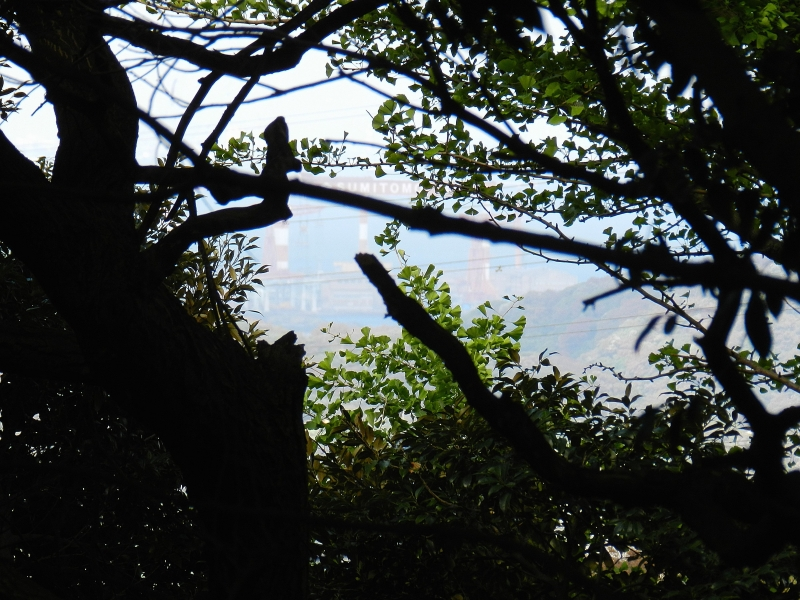 The view south toward Yokosuka.