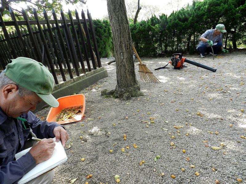 Tuskayama Park volunteers at work on the site.