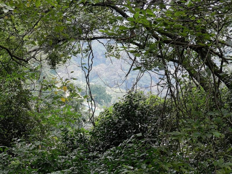 Tsukayama Park looking toward Anjinzuka.