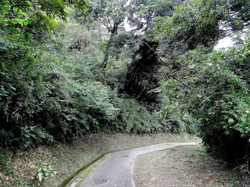 Tsukayama Park walking trail toward Anjinzuka.
